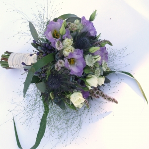 Lilac Sparks